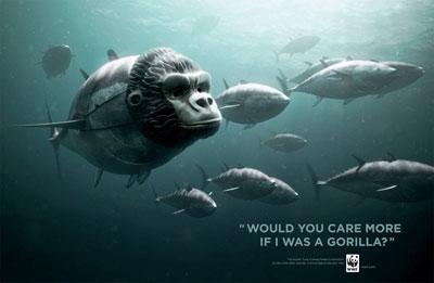 WWF Ogilvy