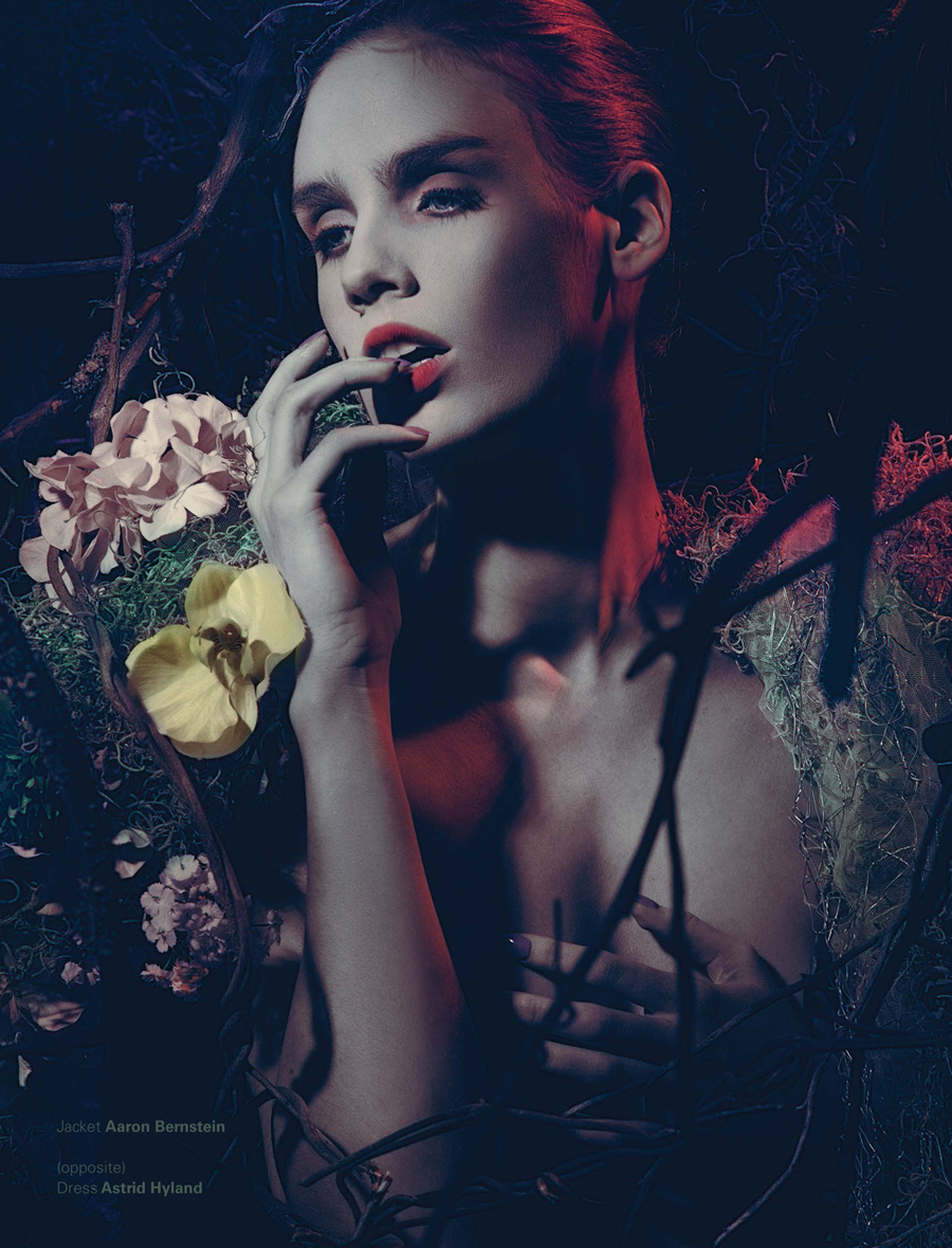 <b>...</b> <b>An Le</b> <b>...</b> - Fleur-de-la-Nuit-An-Le-05