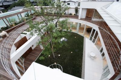 F Residence Edward Suzuki