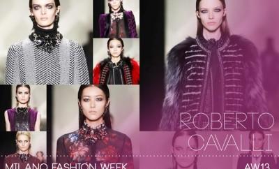 Roberto-Cavalli-FW13-Womens-01