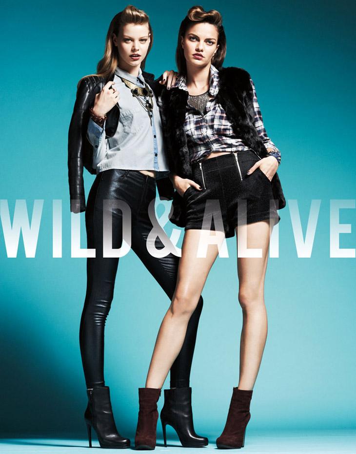 Wild & Alive