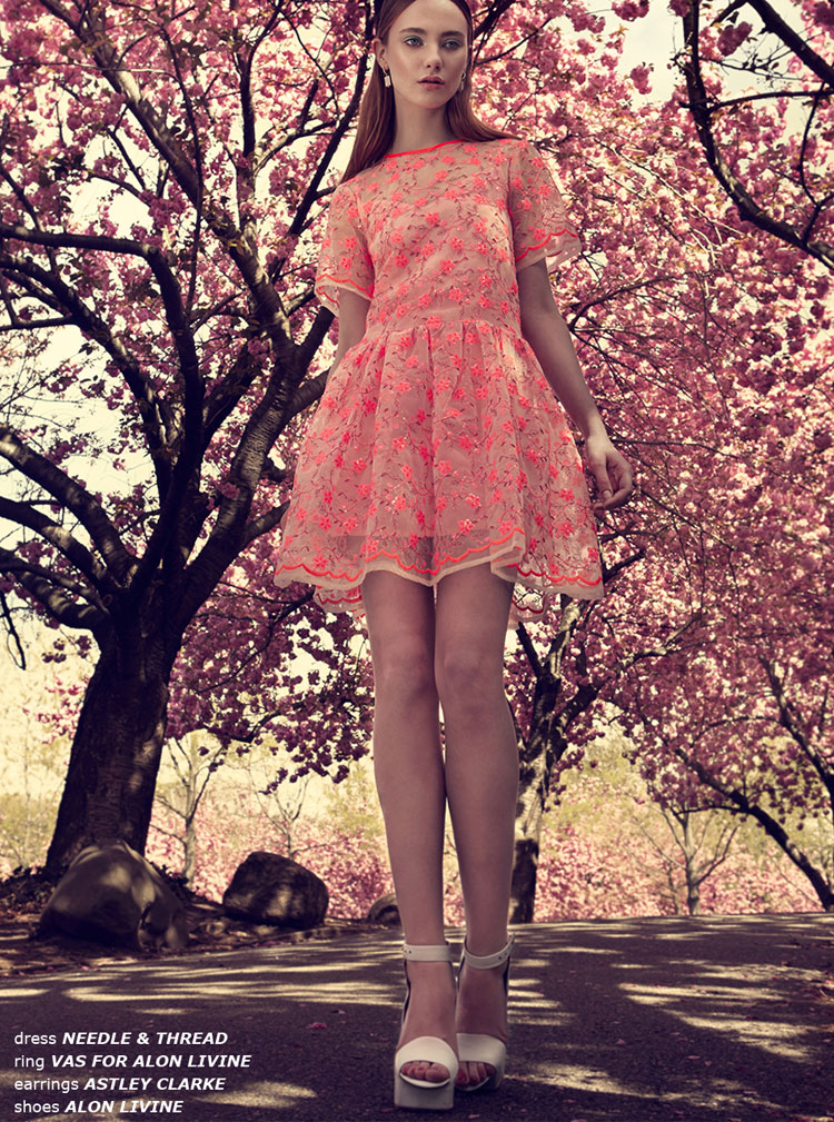 Cherry Blossom Georgia Alexandra