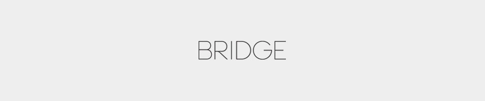bridge-artists