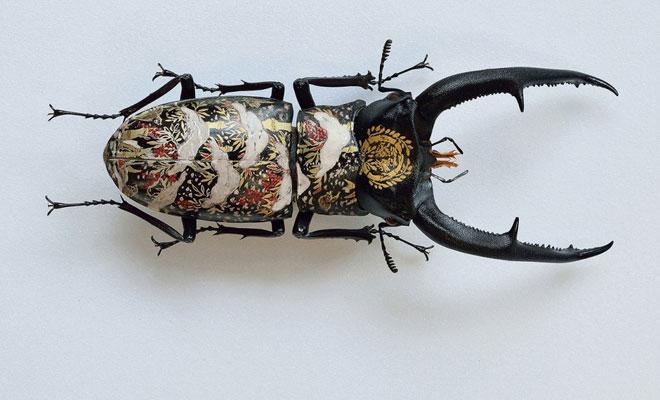 2f98d97238d Akihiro Higuchi Finds a Unique Canvas  Oil On A Beetle