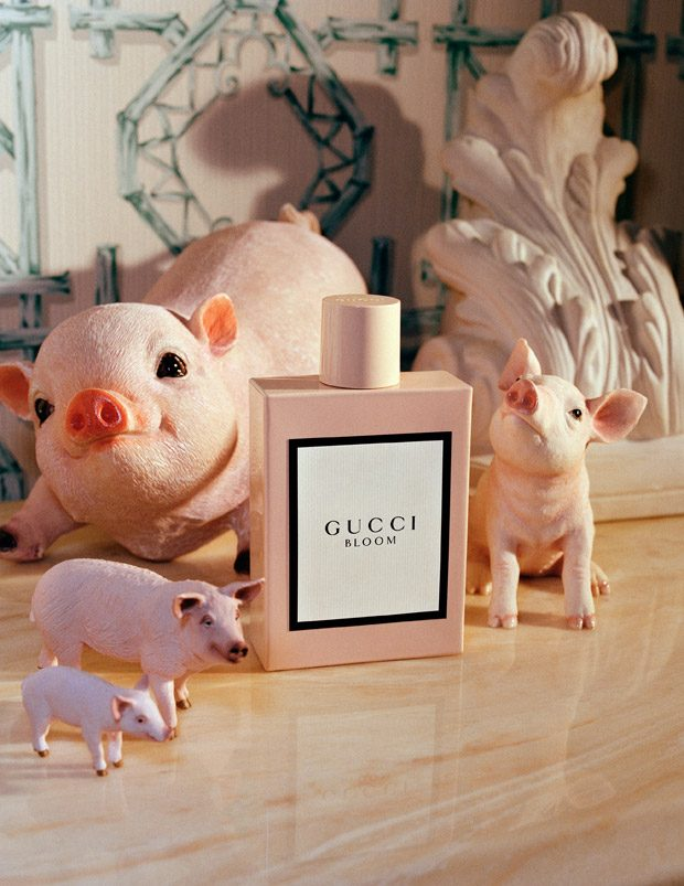 The Year of the Pig: GUCCI's Chinese New Year Capsule ...