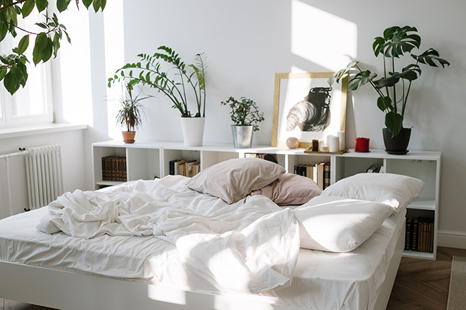 Transforming Your Dorm Into a Magazine-Worthy Retreat: 7 Must-Know Tips & Tricks