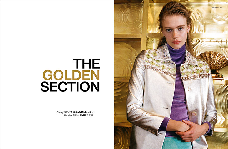 DSCENE STYLE STORIES: The Golden Section by Stefano Sciuto